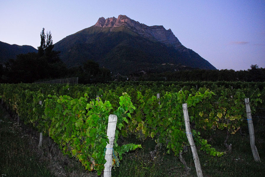 Paysage vigne et montagne près d'un hébergement en Coeur de Savoie