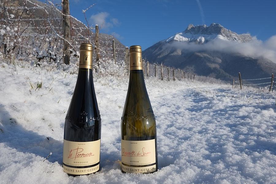 Le vignoble savoyard comme décor pour votre prochain séjour dans les Alpes en hébergement dans un gîte